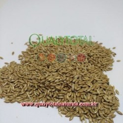 Alpiste Importado Extra (granel)