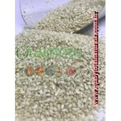 gergelim Branco Despeliculado Indiano (granel)